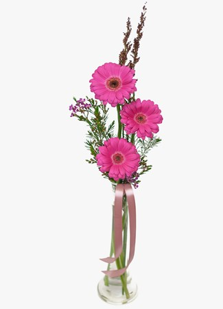 Arrangements: Pink Gerberas in Small Glass Vase