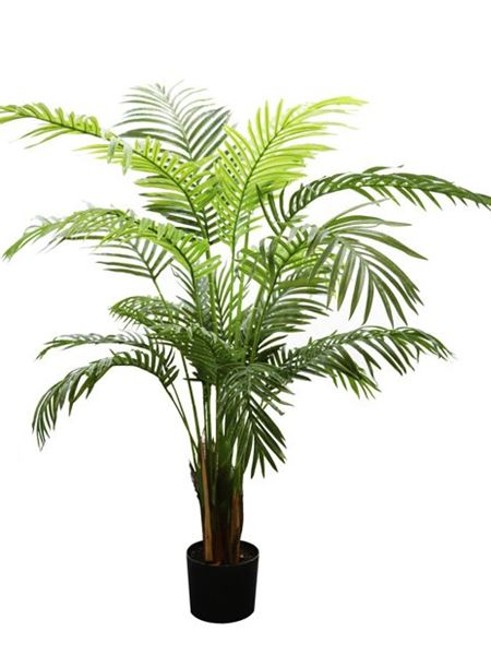 Silk Flowers & Plants: Palm Tree - Potted