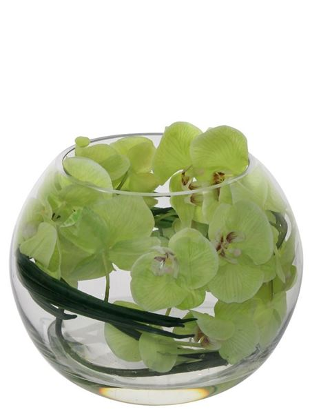 Silk Flowers & Plants: Phalenopsis Orchids In Glass Fishbowl (Silk)
