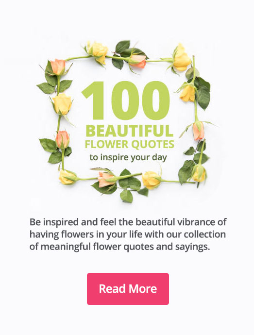 100 Beautiful Flower Quotes to Inspire your Day