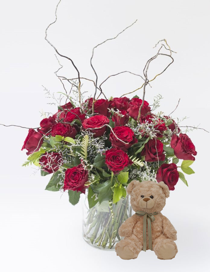 Curly willow love with teddy sa florist